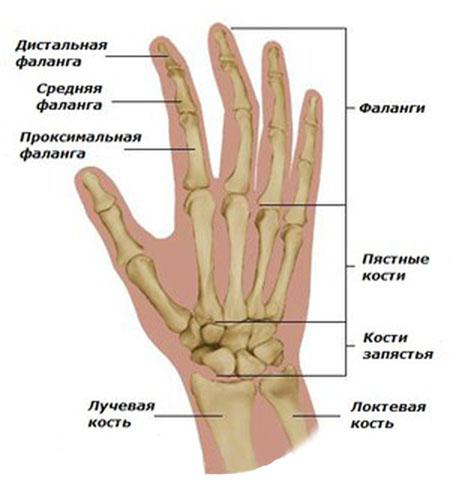 tabletės nuo artrito sąnarių