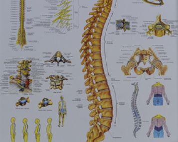 gerklės sąnarių edema nėra puta skausmas