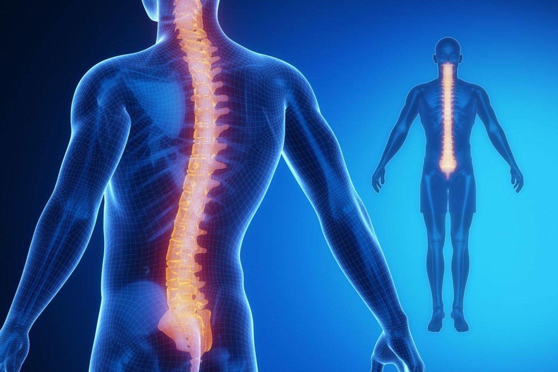ropė kurios priklauso sąnarių gydymo gydymas alkūnės bendrą tepalo artrito
