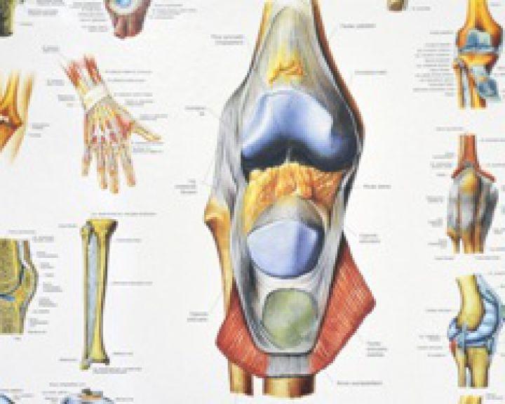 gerklės bendra ant rankų priežastis sąnarių skausmas uždegimas
